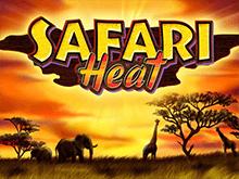 Дикий игровой автомат Safari Heat играйте онлайн на деньги в клубе Вулкан